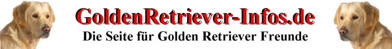 Golden Retriever Infos zum Hund